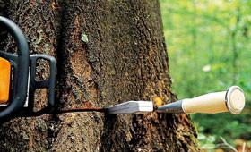 Středně silné motorové pily pro lesnictví